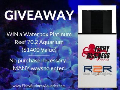 The FishyBusinessAquatics.com Waterbox Giveaway!