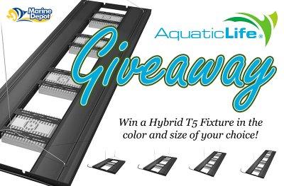 Win an Aquatic Life Hybrid Light—ANY SIZE, ANY COLOR!