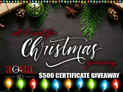 *** The AquaSD All I Want For Christmas $500 Giveaway!!! ***
