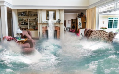 Insurance Implications for Aquarists