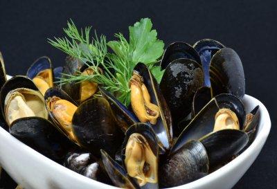 mussels-3148429_1920.jpg