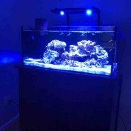 Diy tank build question   REEF2REEF Saltwater and Reef