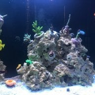 Reef Safe Star Wars Decoration Reef2reef Saltwater And