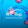 MRReefs
