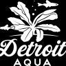 Detroit_aqua