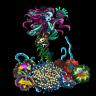 AF_Reef