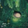 English Aquatics