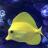 Reef_Obsessed
