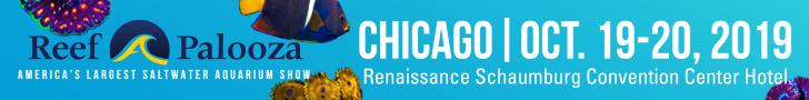 Reef-A-Palooza Chicago 2019