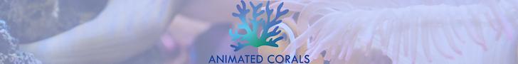 WWW.ANIMATEDCORALS.COM