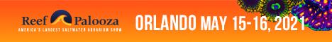 RAP Orlando 21