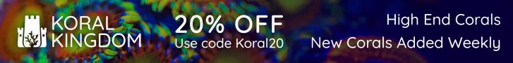 Koral Kingdom