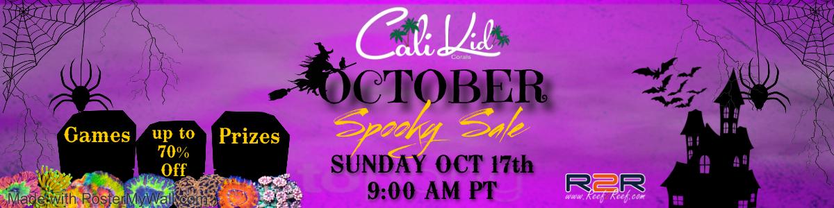 CaliKid Flash Sale
