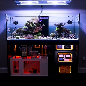 FTS + Stand Feb 2017